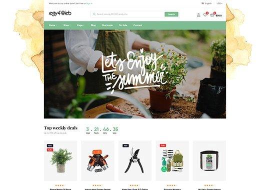 شركة تصميم واستضافة متاجر إلكترونية